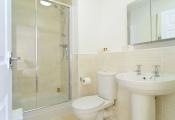 ferndown-shower-2