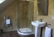 ferndown-shower-4